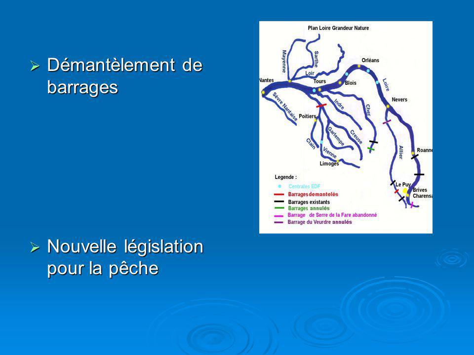 Démantèlement de barrages