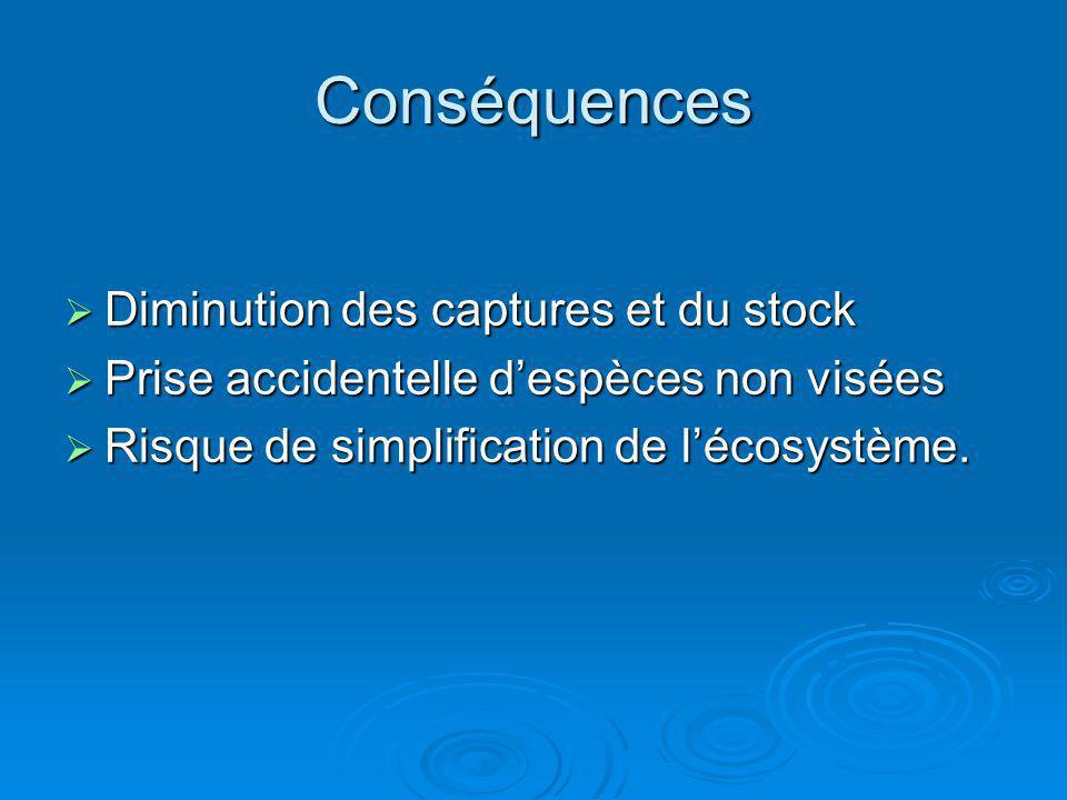 Conséquences Diminution des captures et du stock