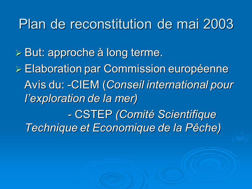 Plan de reconstitution de mai 2003