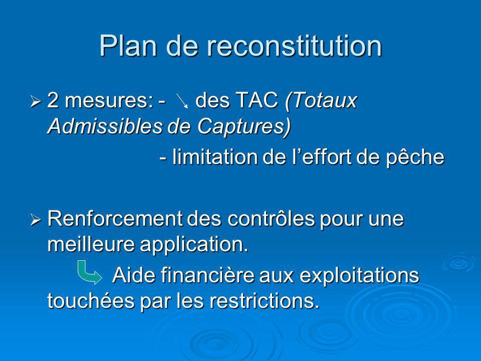 Plan de reconstitution