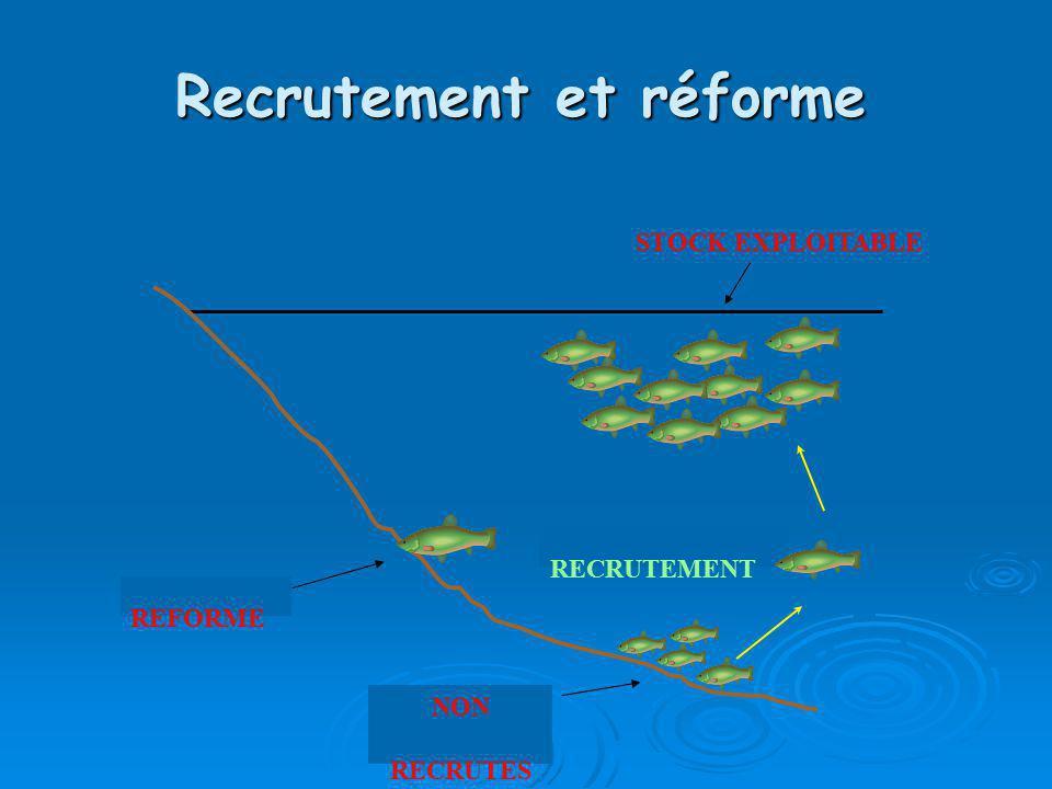 Recrutement et réforme