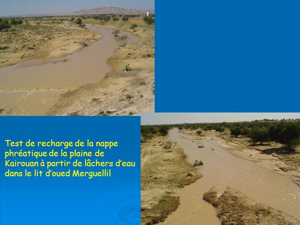 Test de recharge de la nappe phréatique de la plaine de Kairouan à partir de lâchers d'eau dans le lit d'oued Merguellil