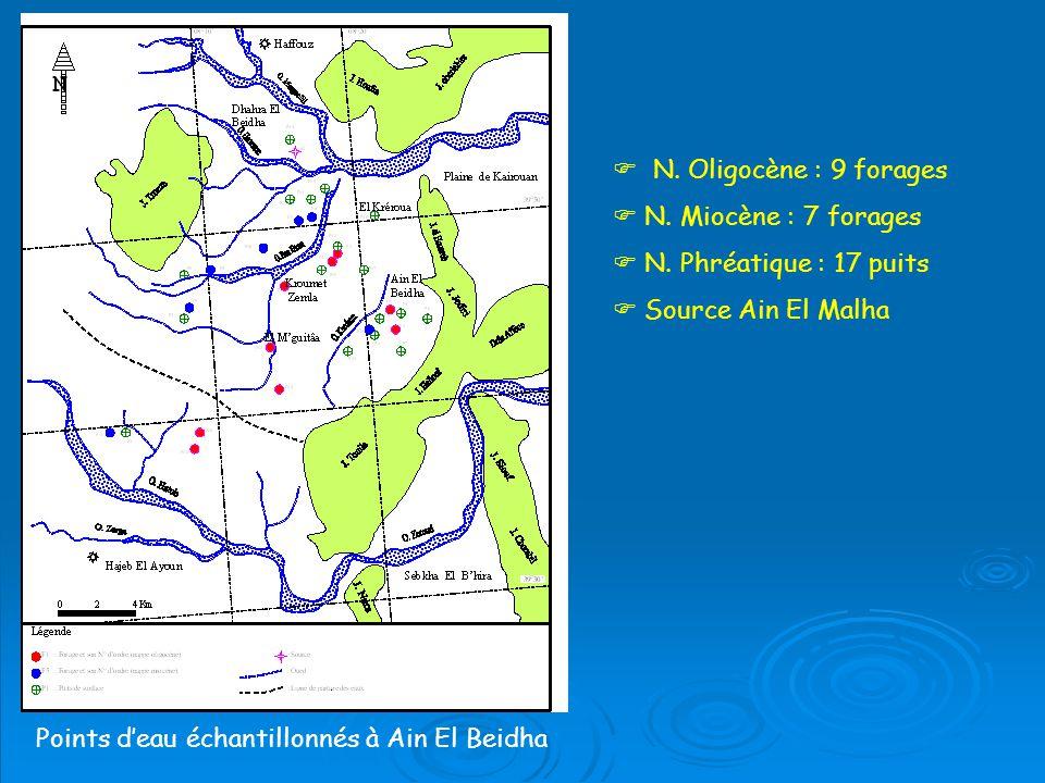 Points d'eau échantillonnés à Ain El Beidha