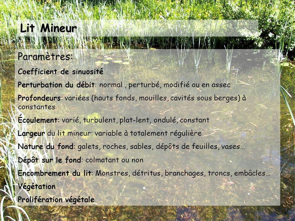 Lit Mineur Paramètres: Coefficient de sinuosité
