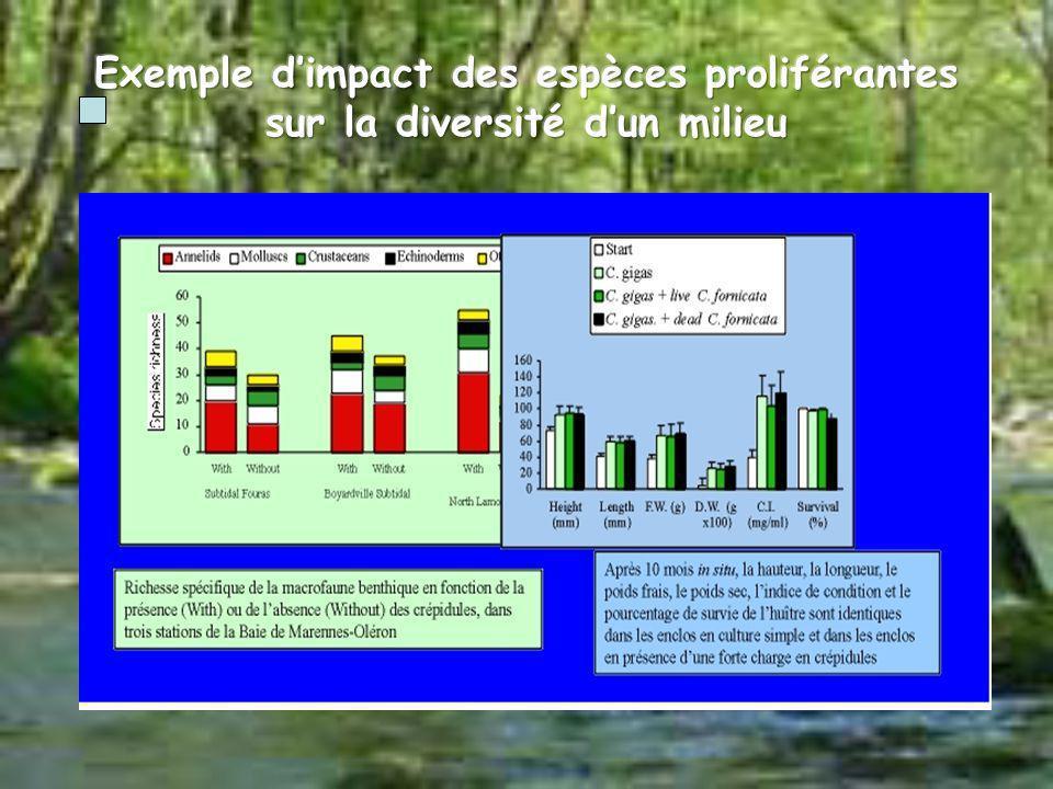 Exemple d'impact des espèces proliférantes sur la diversité d'un milieu