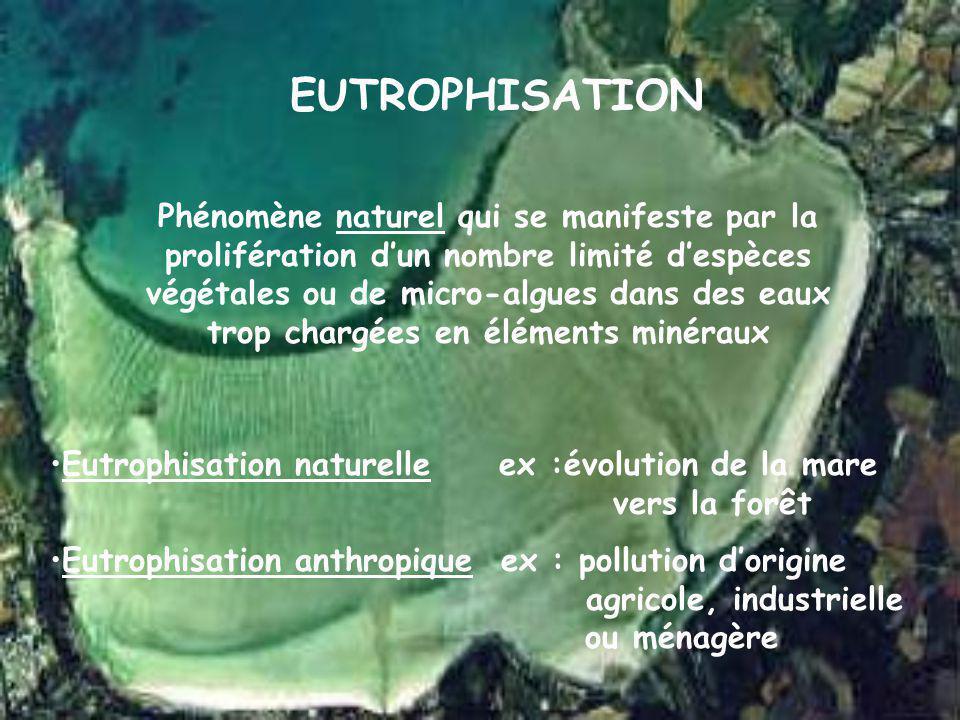 EUTROPHISATION