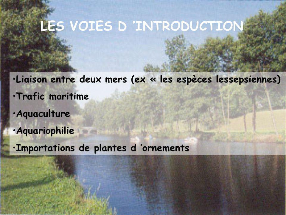 LES VOIES D 'INTRODUCTION