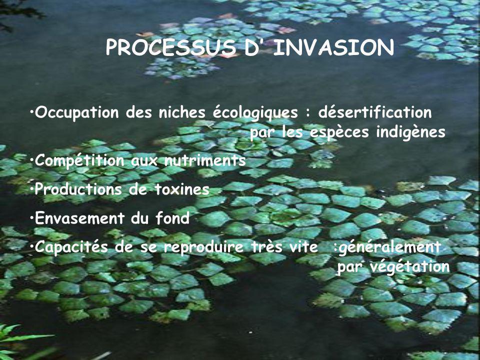 PROCESSUS D' INVASION Occupation des niches écologiques : désertification par les espèces indigènes.