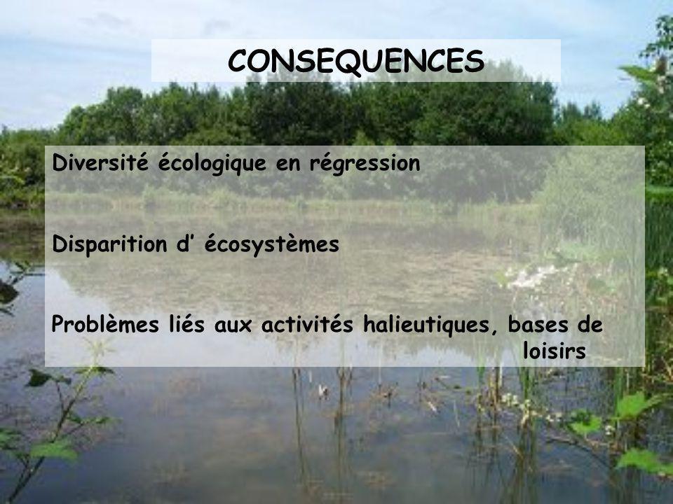 CONSEQUENCES Diversité écologique en régression