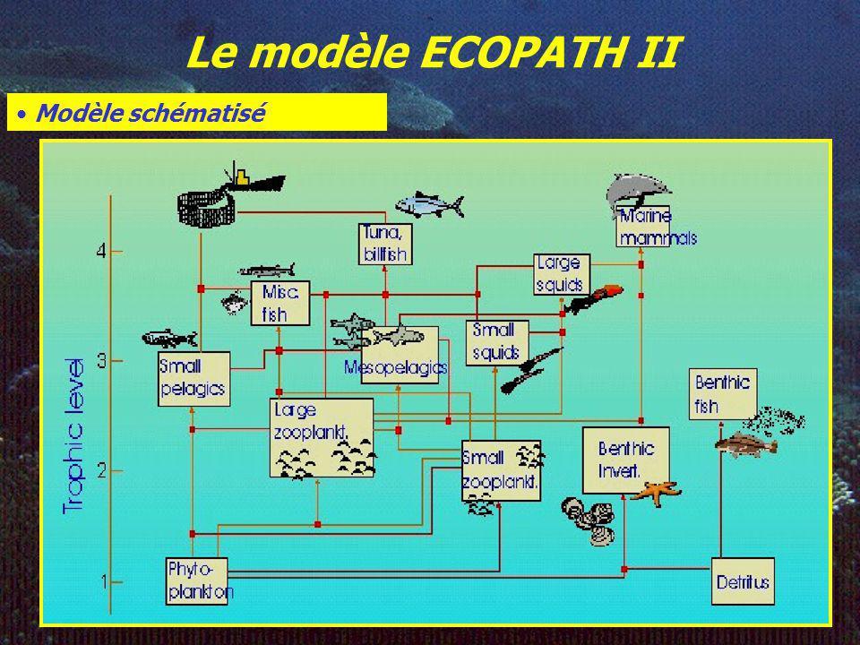 Le modèle ECOPATH II Modèle schématisé