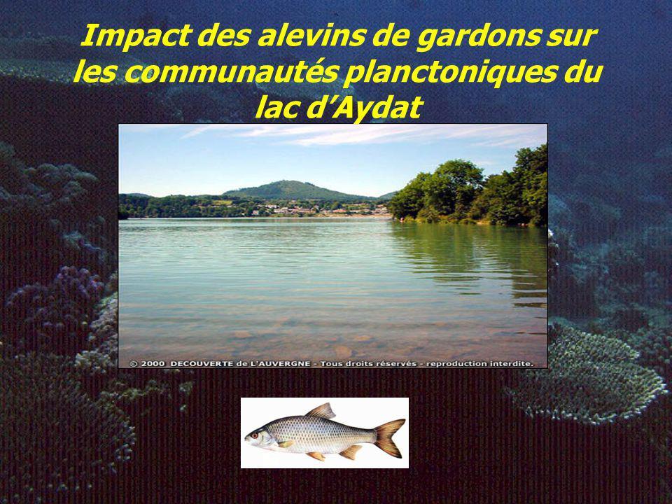 Impact des alevins de gardons sur les communautés planctoniques du lac d'Aydat