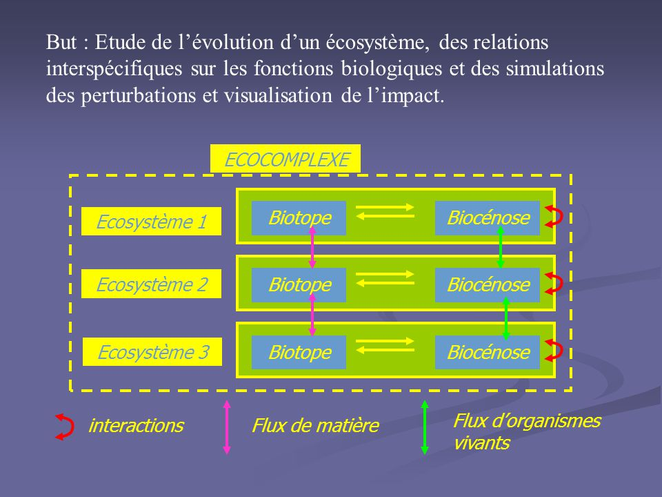 But : Etude de l'évolution d'un écosystème, des relations interspécifiques sur les fonctions biologiques et des simulations des perturbations et visualisation de l'impact.