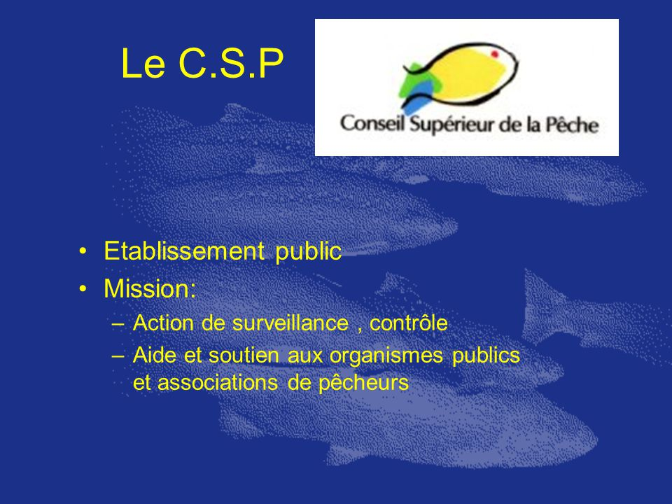 Le C.S.P Etablissement public Mission: