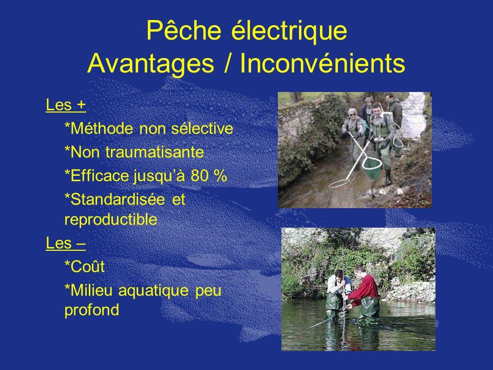 Pêche électrique Avantages / Inconvénients