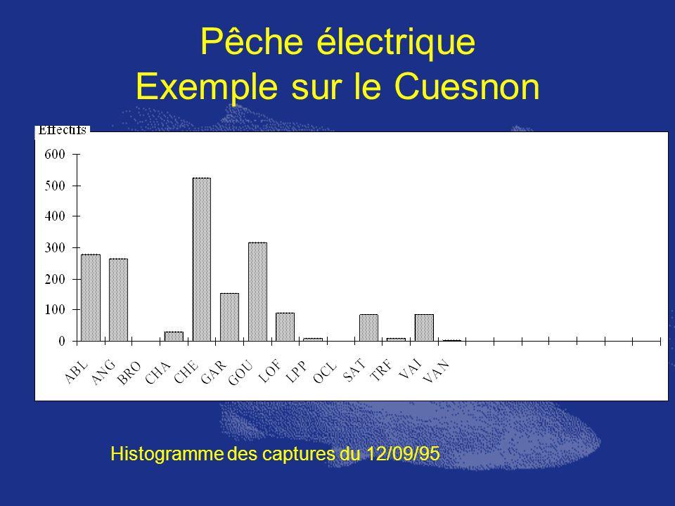 Pêche électrique Exemple sur le Cuesnon