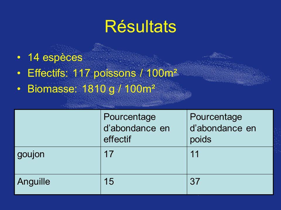 Résultats 14 espèces Effectifs: 117 poissons / 100m²