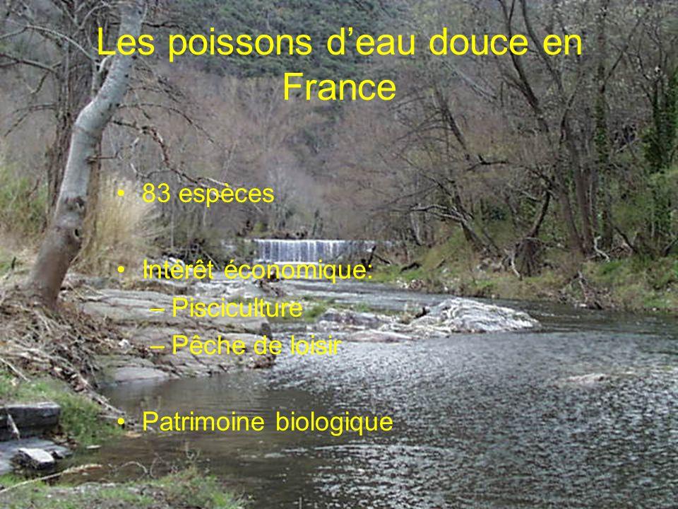 Les poissons d'eau douce en France