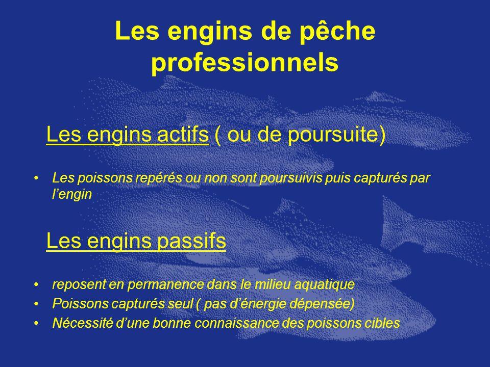 Les engins de pêche professionnels