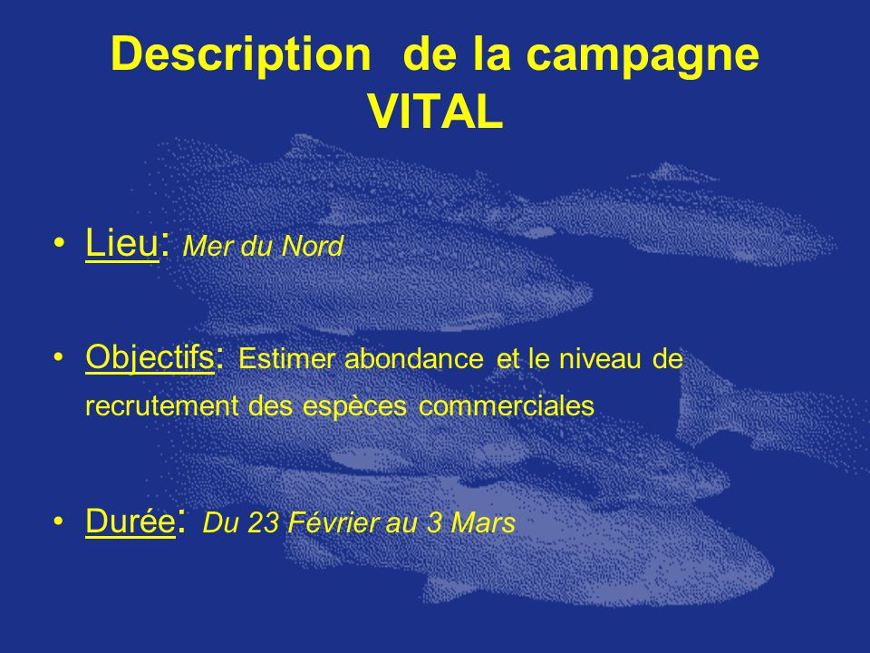Description de la campagne VITAL