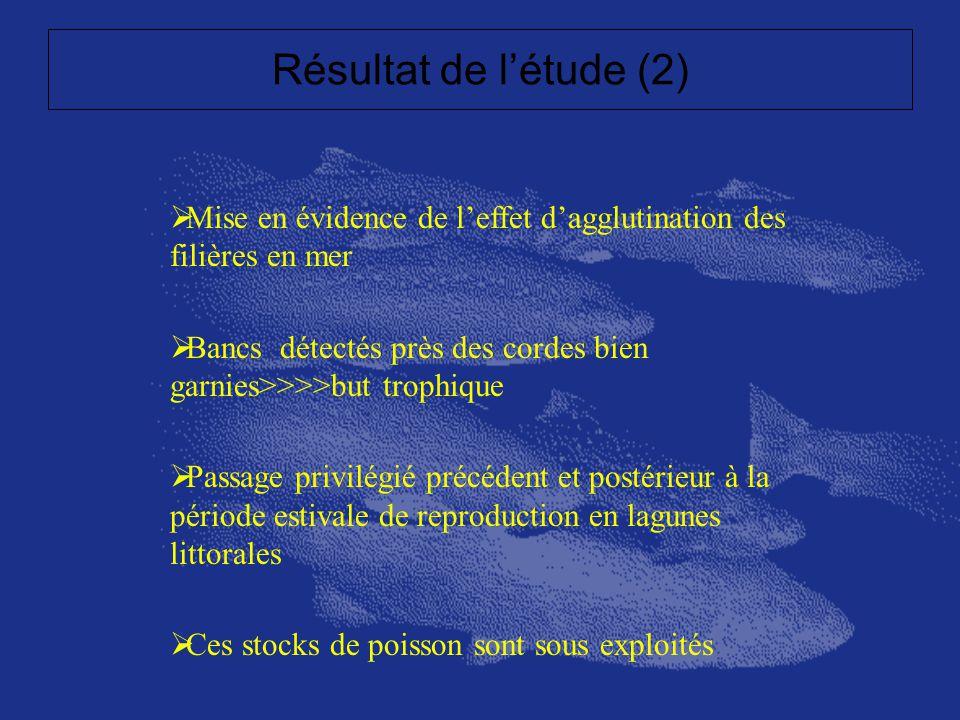 Résultat de l'étude (2) Mise en évidence de l'effet d'agglutination des filières en mer.
