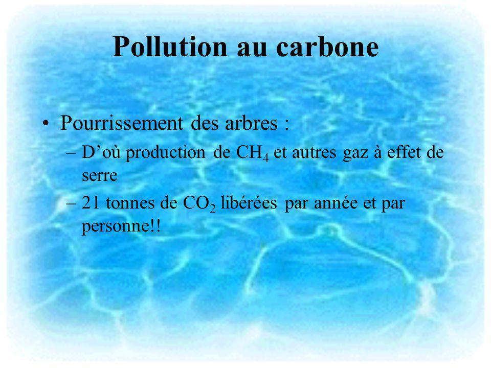 Pollution au carbone Pourrissement des arbres :