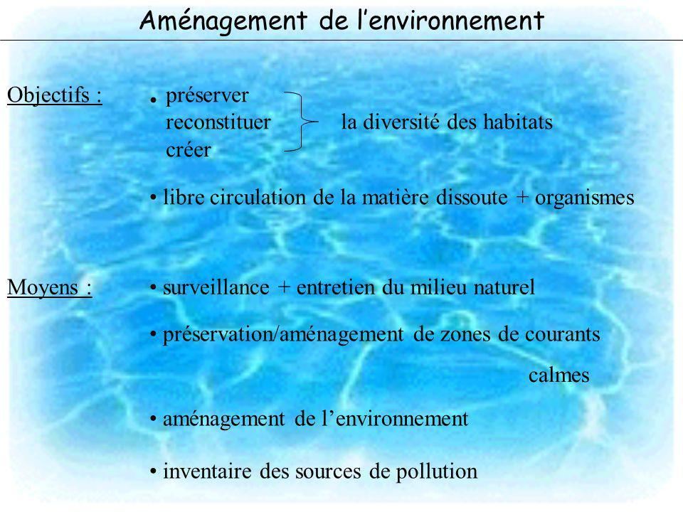 Aménagement de l'environnement