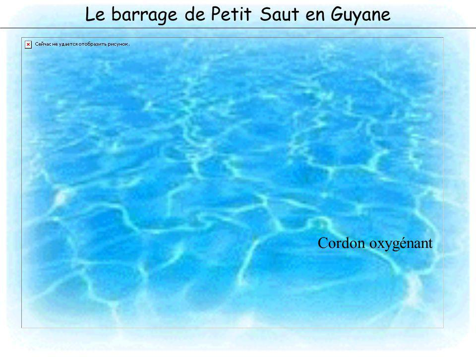 Le barrage de Petit Saut en Guyane