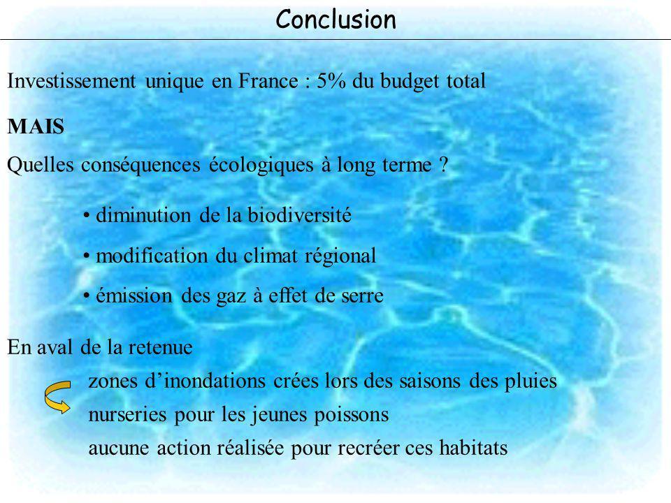Conclusion Investissement unique en France : 5% du budget total MAIS