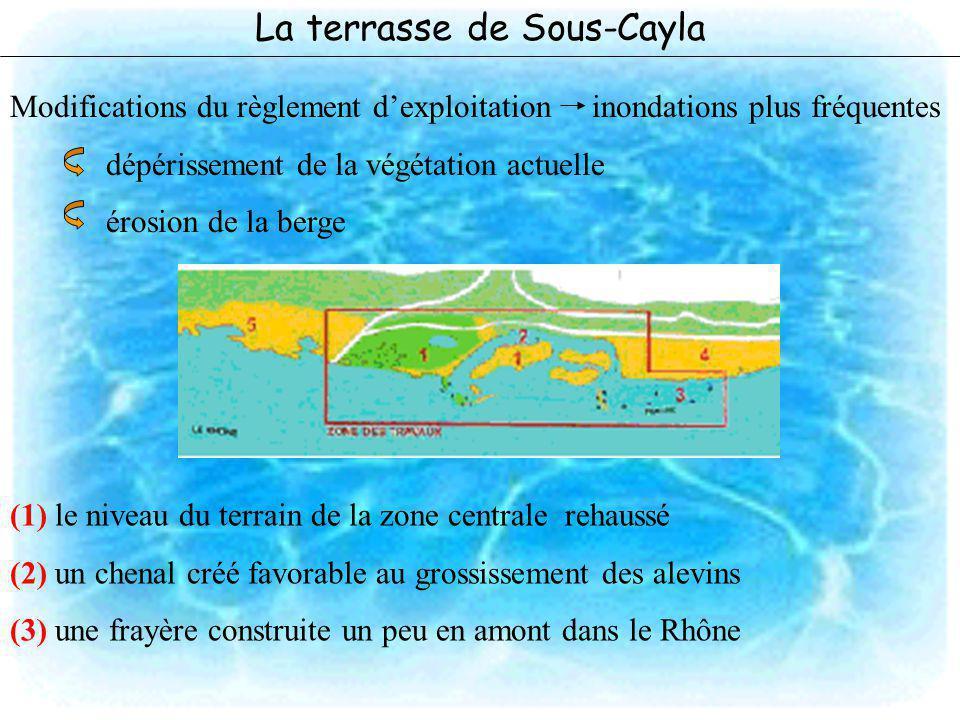 La terrasse de Sous-Cayla