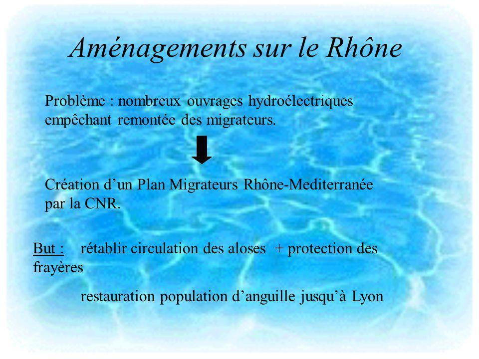 Aménagements sur le Rhône