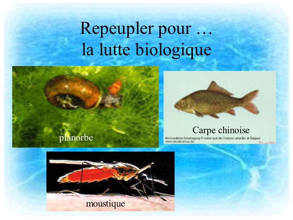 Repeupler pour … la lutte biologique