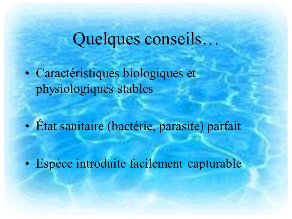 Quelques conseils… Caractéristiques biologiques et physiologiques stables. État sanitaire (bactérie, parasite) parfait.