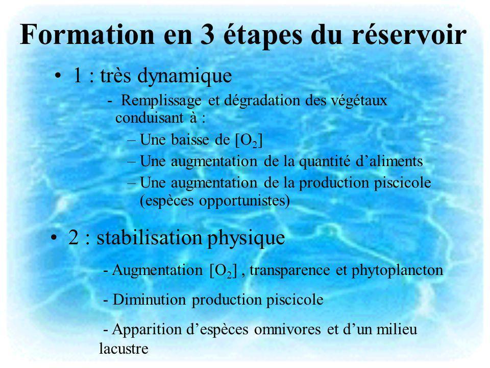 Formation en 3 étapes du réservoir