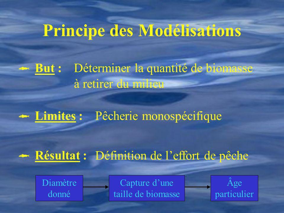 Principe des Modélisations