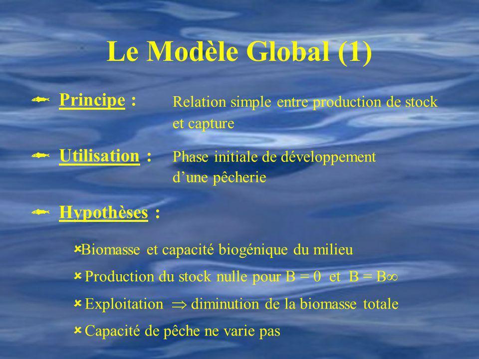 Le Modèle Global (1) Relation simple entre production de stock et capture.  Principe : Phase initiale de développement d'une pêcherie.