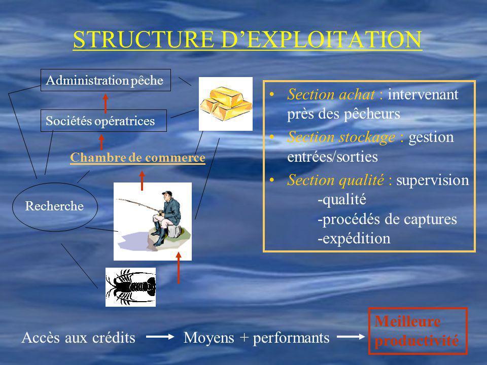 STRUCTURE D'EXPLOITATION