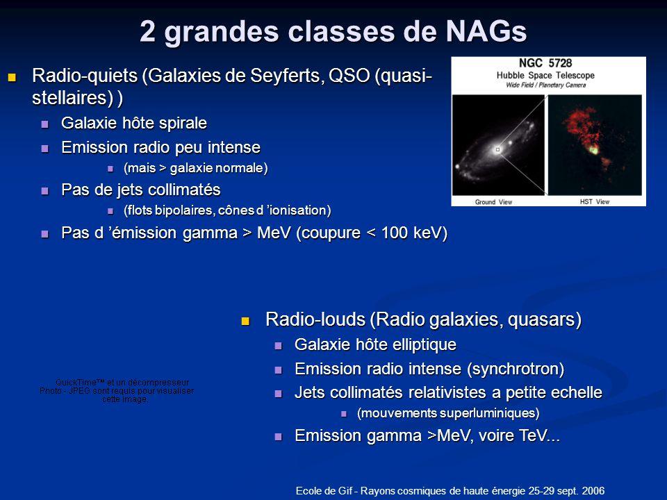 2 grandes classes de NAGs