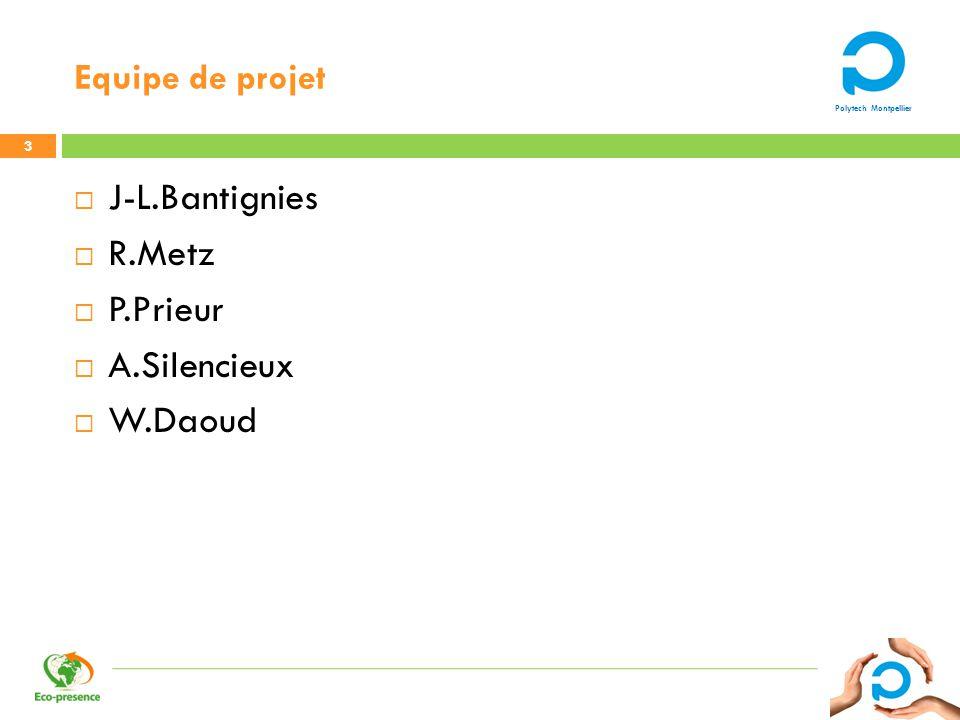 Equipe de projet J-L.Bantignies R.Metz P.Prieur A.Silencieux W.Daoud