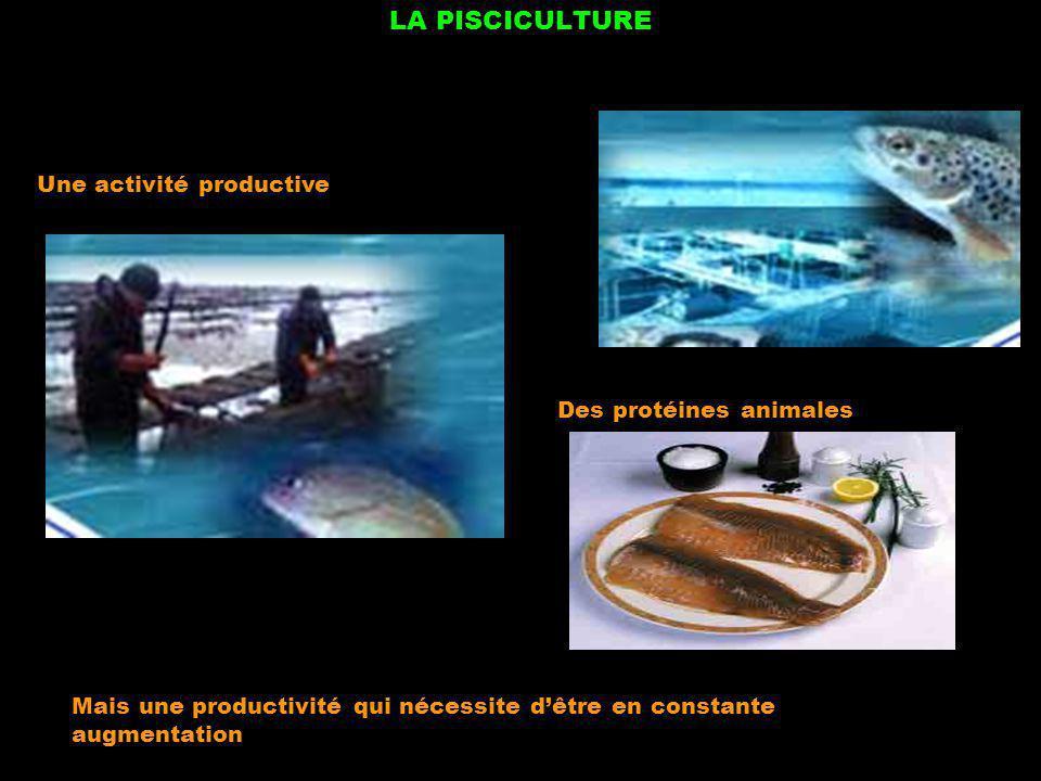 LA PISCICULTURE Une activité productive Des protéines animales