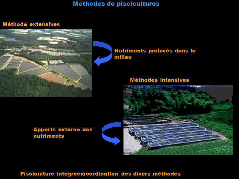 Méthodes de piscicultures