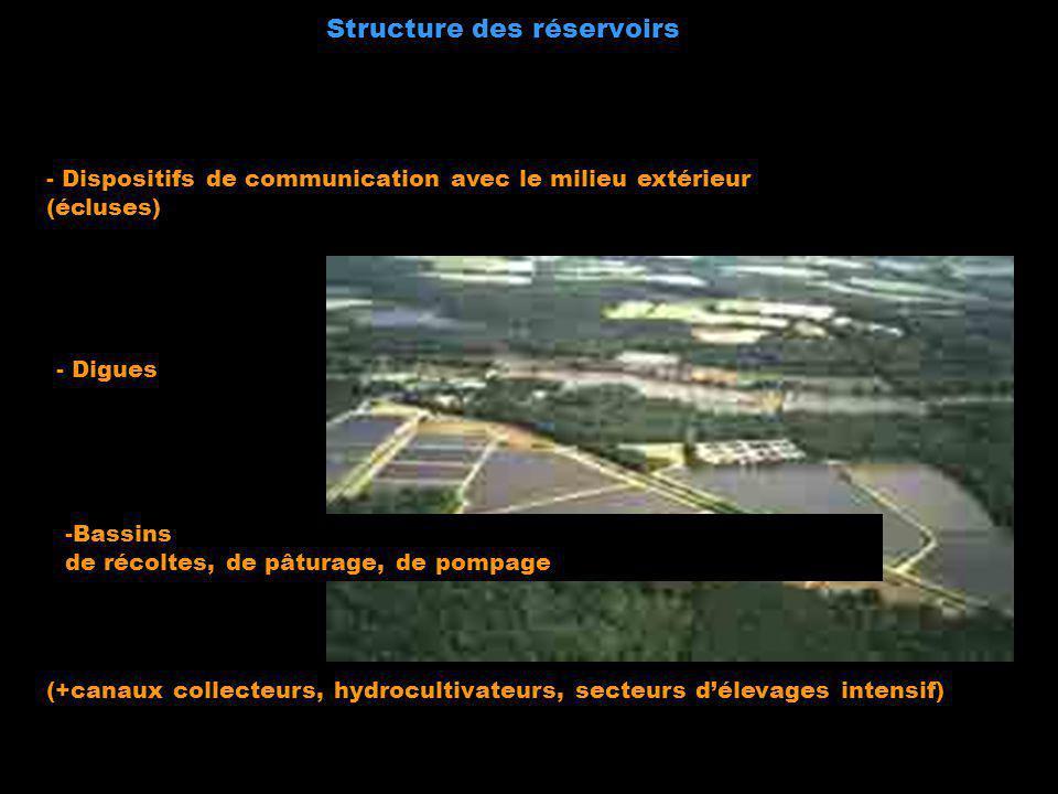 Structure des réservoirs