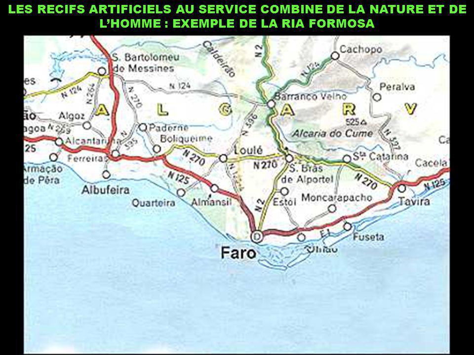 LES RECIFS ARTIFICIELS AU SERVICE COMBINE DE LA NATURE ET DE L'HOMME : EXEMPLE DE LA RIA FORMOSA