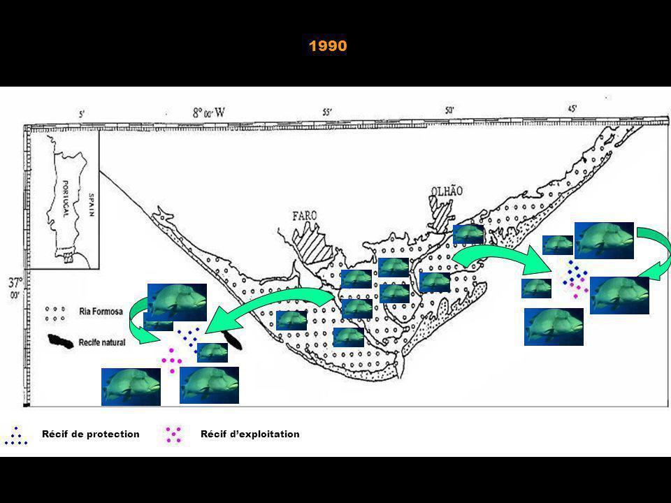 1990 Après 1990 Avant 1990 Récif de protection Récif d'exploitation