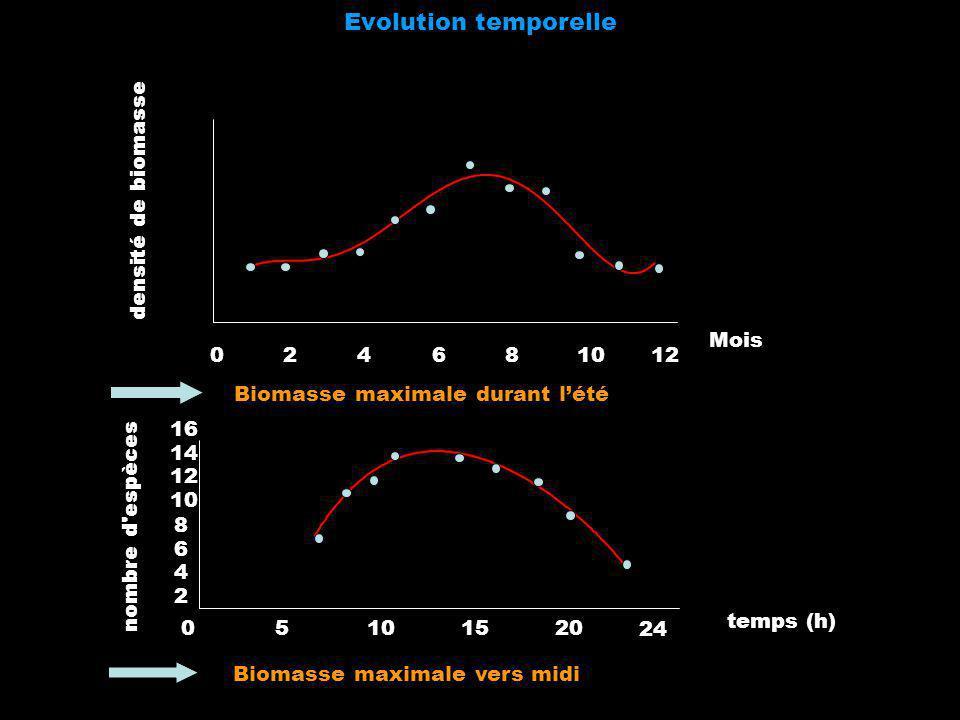 Evolution temporelle 2 4 6 8 10 12 Mois densité de biomasse