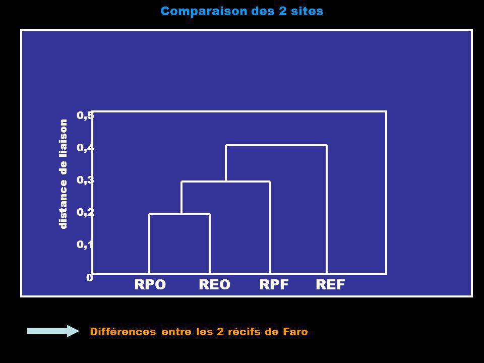 RPO REO RPF REF Comparaison des 2 sites 0,5 0,4 distance de liaison