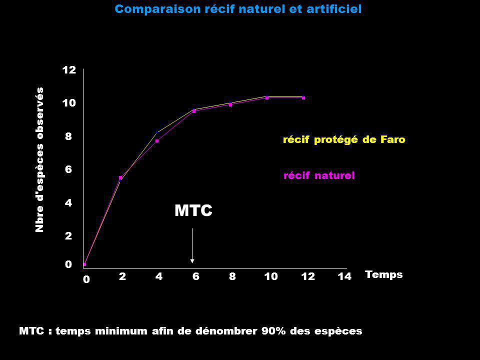 Comparaison récif naturel et artificiel