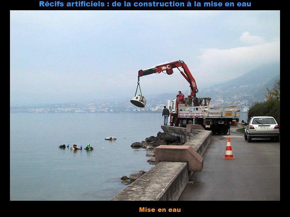 Récifs artificiels : de la construction à la mise en eau