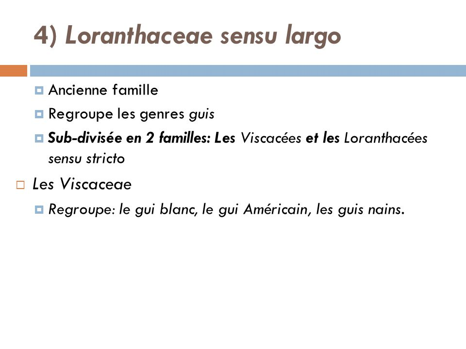 4) Loranthaceae sensu largo