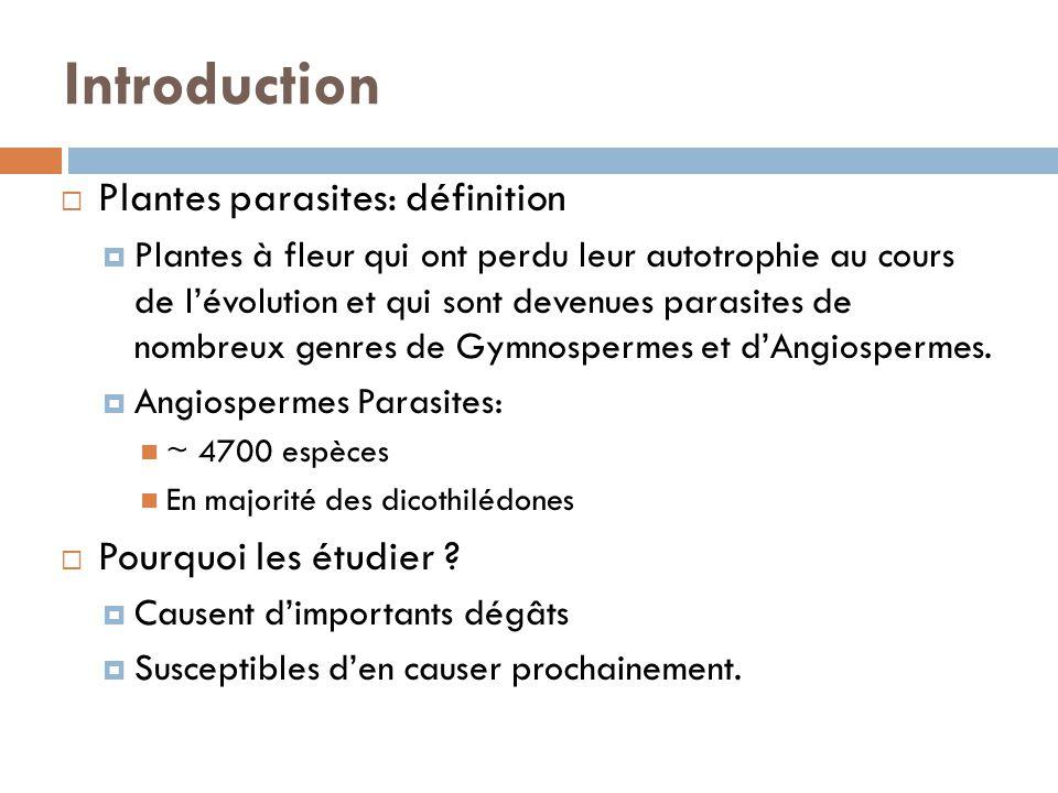 Introduction Plantes parasites: définition Pourquoi les étudier