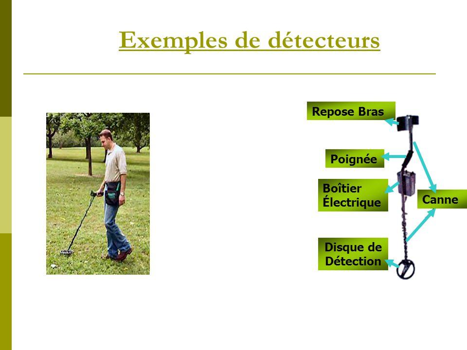 Exemples de détecteurs